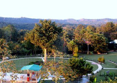 aerial-view-garden